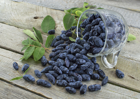 Pile of blue honeysuckle berries in a glass cup on wooden table Zdjęcie Seryjne - 65840480