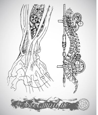 backbone: Human anatomy hand and backbone with vintage mechanism in steam punk style. Arm bones and retro machines. Hand drawn illustration, sketch tattoo, old black and white science set  with lettering
