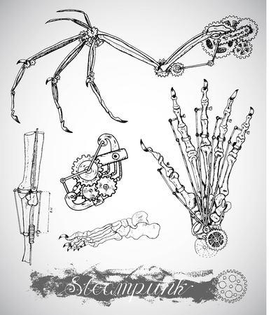 monstruo ala fantasía, la pierna y la mano con el mecanismo de la vendimia en el estilo punky del vapor. Huesos y máquinas retro. dibujado a mano ilustración, tatuaje boceto, antigua ciencia conjunto blanco y negro con las letras