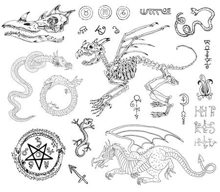 Grafisch set met monsterskelet en schedel, draken, slang, hagedis en mystieke symbolen. Hand getekende illustratie, schets tattoo, oude zwart-witte verzameling van fabel of fantasie dieren Vector Illustratie