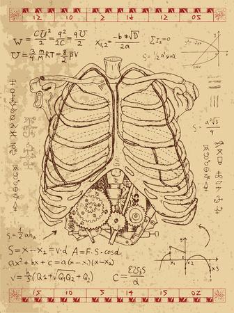 Gráfico fijado con el pecho de la anatomía humana, fórmulas matemáticas y el mecanismo de punk vapor en las costillas. Dibujado a mano ilustración de la vendimia, tatuaje boceto, ciencia fondo de edad con símbolos esotéricos