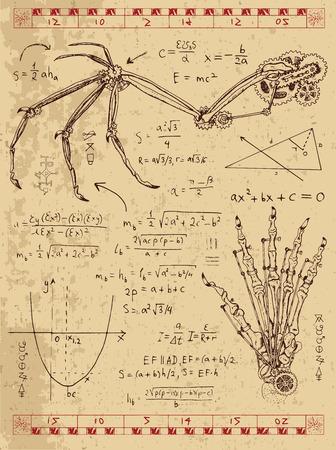 ファンタジー翼、モンスターの手および数式のスチーム パンクのメカニズムとグラフィックのセットです。手描きのビンテージ図スケッチ タトゥー、神秘的な記号と古い科学の背景