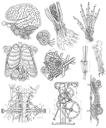 mechanical parts: Graphic linear set with body and mechanical parts, and old mechanisms.  Steampunk and ancient technology concept. Brain, hand, chest and throat of robot. Engraved illustrations isolated on white