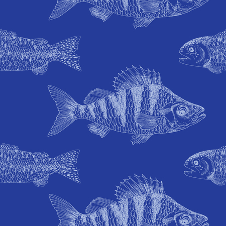 crucian: Seamless background with crucian carp on blue, illustration with hand drawn elements Illustration