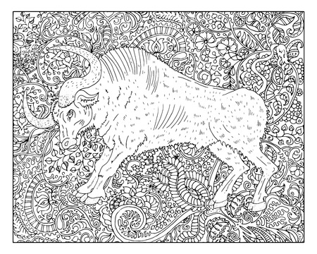 year of the ox: Hand drawn ox against zen floral pattern background for adult coloring book. Chinese new year astrological sign, horoscope and zodiac vector symbol, graphic linear illustration, vintage engraved style