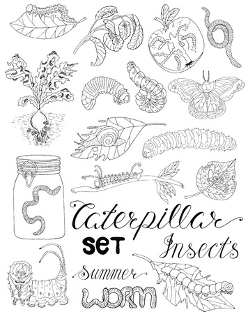 maggot: Hand drawn set with pests, larva, caterpillars, moth, worms and other invader insects isolated. Doodle line art illustration and graphic sketch, black and white vector with icons, gardening theme Illustration