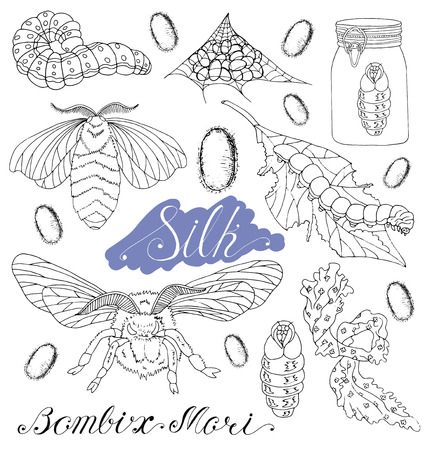 moth: Hand drawn set with silk moth, worms, larva, silk, cocoons isolated. Doodle line art illustration and graphic sketch, black and white vector with icons, bombix mori collection Illustration