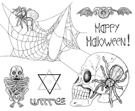 pentacle: Black and white Halloween set with spiders, cobweb, pentacle, lettering, skull, skeleton and bones. Doodle line art illustration and graphic sketch, hand drawn vector with icons of tarantula and demon