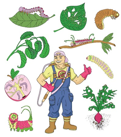 weevils: Colorful set with isolated garden insects and exterminator. Pest control and garden concept. Larva, caterpillars and worms, handsome man with professional equipment. Colorful doodle and vector icons