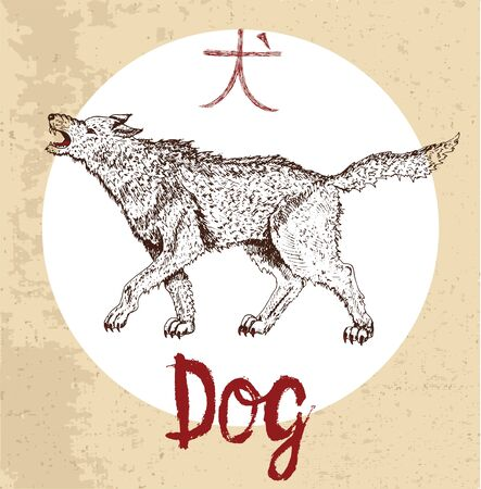 year of the dog: Chinese zodiac symbol of hand drawn Dog with lettering. Horoscope and astrological sign of asian new year calendar. Graphic drawing with engraved animal. Chinese hieroglyph means Dog Illustration