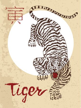 Chinese zodiac symbol of hand drawn Tiger with lettering. Horoscope and astrological sign of asian new year calendar. Graphic drawing with engraved animal. Chinese hieroglyph means Tiger