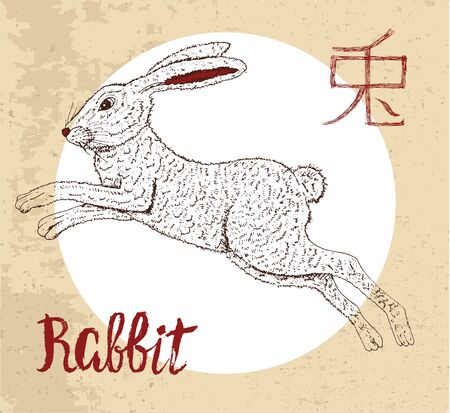 year of the rabbit: Chinese zodiac symbol of hand drawn Rabbit with lettering. Horoscope and astrological sign of asian new year calendar. Graphic drawing with engraved animal. Chinese hieroglyph means Rabbit Illustration