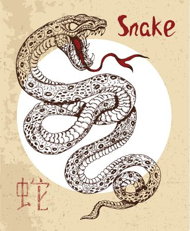 snake year: Chinese zodiac symbol of hand drawn Snake with lettering. Horoscope and astrological sign of asian new year calendar. Graphic drawing with engraved animal. Chinese hieroglyph means Snake Illustration