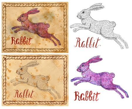 year of the rabbit: Design set with vintage drawings of chinese calendar zodiac symbol - Rabbit. Horoscope and astrological new year sign for card, poster. Graphic, engraved and watercolor illustration with animal. Stock Photo