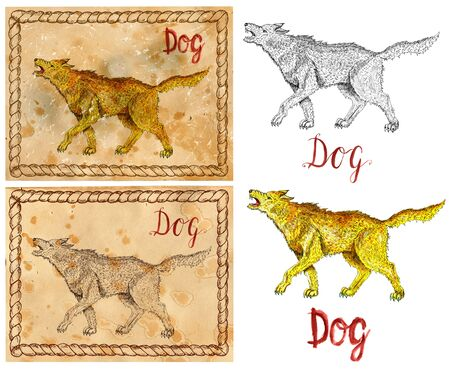 year of the dog: Design set with vintage drawings of chinese calendar zodiac symbol - Dog. Horoscope and astrological new year sign for card, poster. Graphic, engraved and watercolor illustration with animal
