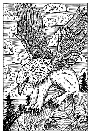 gryphon: Gryphon or griffin. Monster with eagle head and lion body. Fantasy magic creatures collection. Hand drawn vector illustration. Engraved line art drawing, graphic doodle. Template for card game, poster Illustration