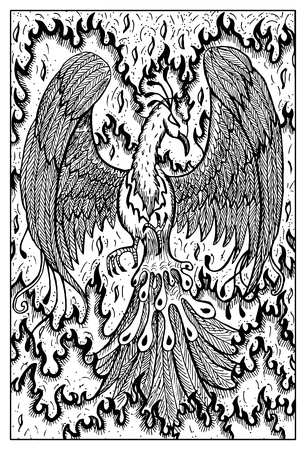 mythical phoenix bird: Phoenix in flame. Bird in fire. Fantasy magic creatures collection. Hand drawn vector illustration. Engraved line art drawing, graphic mythical doodle. Template for card game, poster