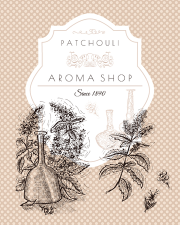 beauty product: Vintage banner with patchouli still life. Hand drawn engraved illustration. Concept of beauty product packaging. Vector design elements for cards, borders