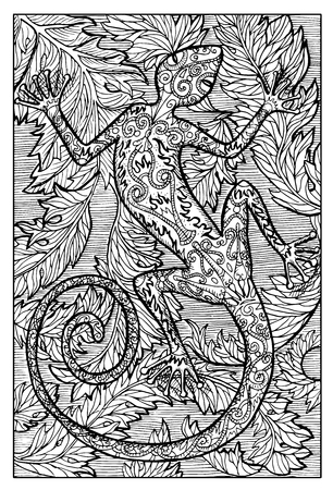 Salamander, fire lizard, sitting on leaves. Hand drawn vector illustration. Engraved line art drawing, black and white doodle. See all fantasy collection in my portfolio set