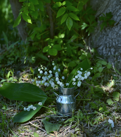 Romantic still life with lily of the valley in the garden. Spring or summer time seasonal vintage background with flowers