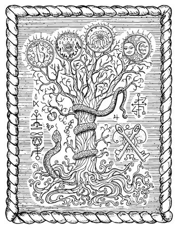 Black and white drawing with mystic and christian religious symbols as snake, tree of knowledge and forbidden fruit in frame. Occult and esoteric vector illustration, gothic engraved background Illustration