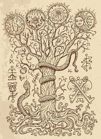 Dessin mystique avec symboles religieux spirituels et chrétiens, serpent, arbre de connaissance et fruit défendu sur fond de texture.