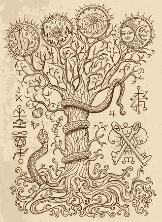 Mystic drawing with spiritual and christian religious symbols, snake, tree of knowledge and forbidden fruit on texture background. Иллюстрация