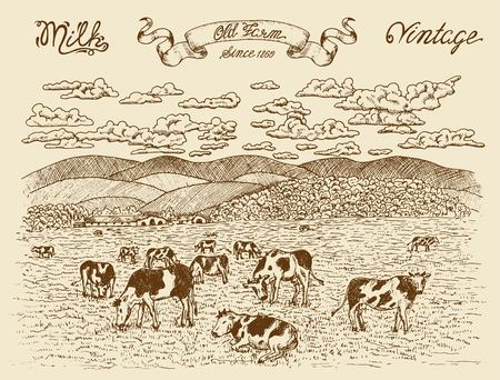 Farmland with cows, vignette banner and lettering on texture background. Vintage vector engraving, hand drawn design illustrations for label, poster. Rural farm concept
