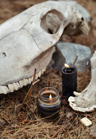 Vertical still life with black candles, incense joss sticks and horse skull. Mystic background with ritual esoteric objects, occult and halloween concept