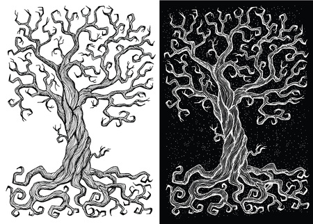 Old tree without leaves on white and black backgrounds. Hand drawn doodle engraved illustration, graphic drawings Illustration