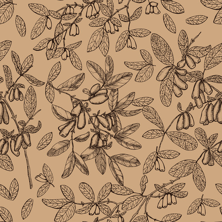 Seamless background with sepia honeysuckle branches and berries. Vintage nature concept, hand drawn vector illustration with engraved design elements
