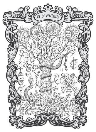 Ass der Pentakel. Kleine Arkana-Tarotkarte. Das Magic Gate deck.Fantasy gravierte Illustration mit okkulten mysteriösen Symbolen und esoterischem Konzept Vektorgrafik