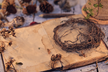 Old roots, antique diary book and seeds on planks. Magic gothic ritual. Wicca, esoteric and occult background with vintage objects