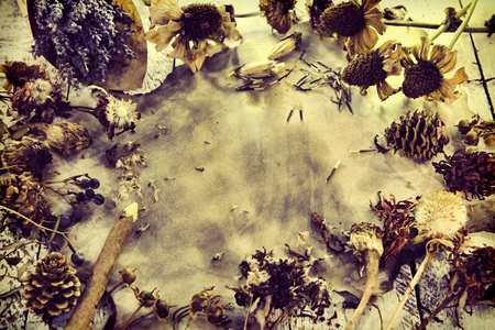 Background with lavender flowers, old paper parchment, pencil, dried herbs, seeds and plants, top view. Magic gothic ritual. Wicca, esoteric and occult background with vintage objects