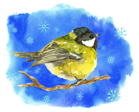 Winter card with tit bird, snowflakes on blue texture background. Natural hand painted watercolor illustration, cut out