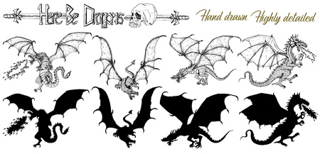 Set with hand drawn realistic detailed dragons and silhouettes on white. Vector sketch of tattoo fantasy concept and t-shirt design. Graphic line art illustration Illustration