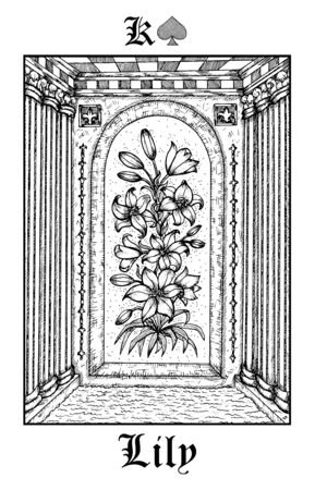Lily flower. Tarot card from vector Lenormand Gothic Mysteries oracle deck. Black and white engraved illustration. Fantasy and mystic line art drawing. Gothic, occult and esoteric background