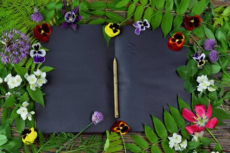 Open book with black pages, herbs and summer flowers on green witch table. Esoteric, gothic and occult concept, Halloween mystic background, divination ritual