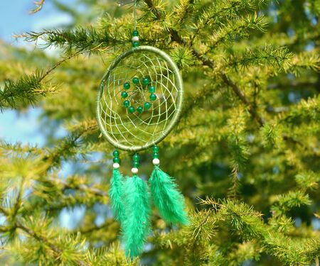 Hanging dreamcatcher with green feathers and beads against fir tree branches. Mystic background
