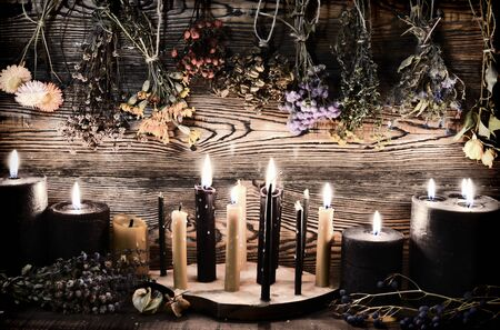 Black candles, herbs and flowers against wooden wall on witch table. Esoteric, wicca and occult background, fortune telling and divination ritual, mystic concept