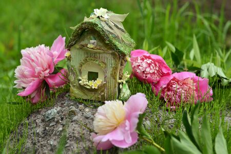 Peony flowers with fairy cottage. Lovely miniature house for greeting cards, wedding or birthday concept. Vintage summer background
