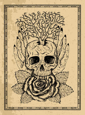 Wiccan emblem with skull, human hands, rose flower and tree in frame. Esoteric, occult and gothic vector illustration with symbols of death, Halloween mystic background, engraved outline drawing, tattoo vintage print.