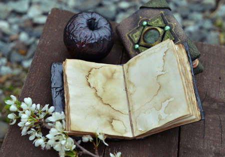 Open diary with empty pages, black apple and blooming branch on planks. Esoteric, gothic and occult background with magic objects, mystic and fairy tale concept