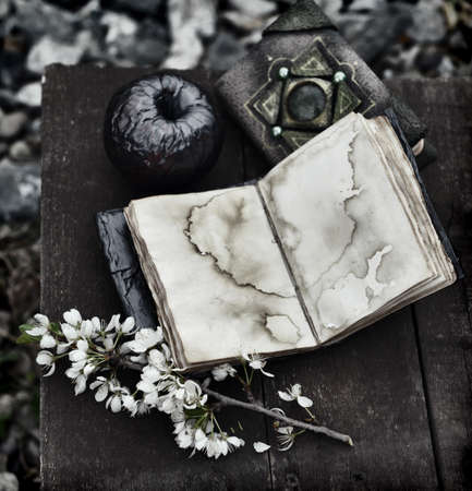 Grunge still life with open diary, black apple and blooming branch on witch table. Esoteric, gothic and occult background with magic objects, mystic and fairy tale concept