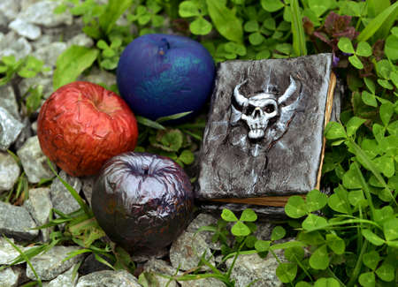 Colorful magical apples and hand crafted witch book of spells in the grass. Esoteric, gothic and occult background with magic objects, mystic and fairy tale concept Stock fotó