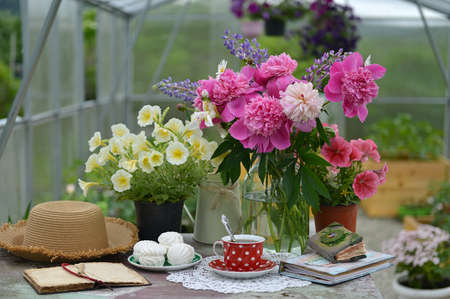 Still life with cup of tea, dessert, diary and beautiful flowers in greenhouse. Vintage botanical background with plants, home hobby still life with gardening objects and nature. Zdjęcie Seryjne
