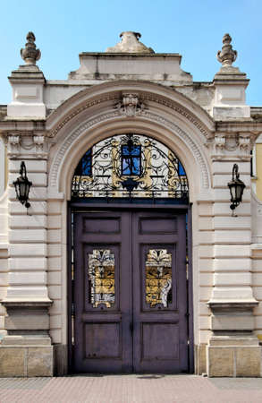 french style big metal entrance door with two windows Stock Photo - 12791175