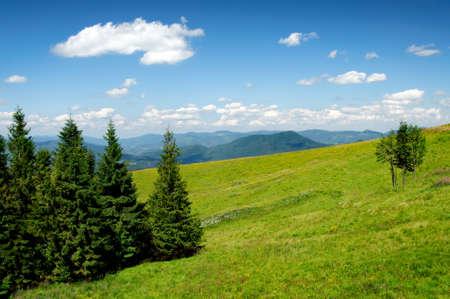 carpathian mountains: view on carpathian mountains landscape Stock Photo