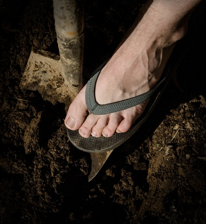foot pressing a shovel into ground Stock Photo - 13295726