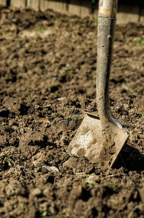 a metal shovel stuck in dirt photo